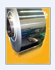 Ningbo Yinzhou Sanshi Trade Co.,Ltd