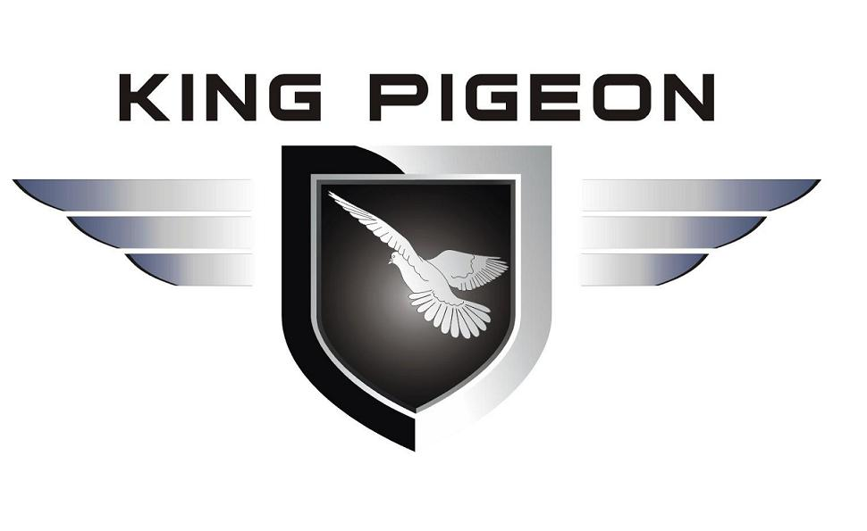 King Pigeon Communication Co.,Ltd