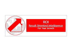 Result Oriented Intelligence (ROI)