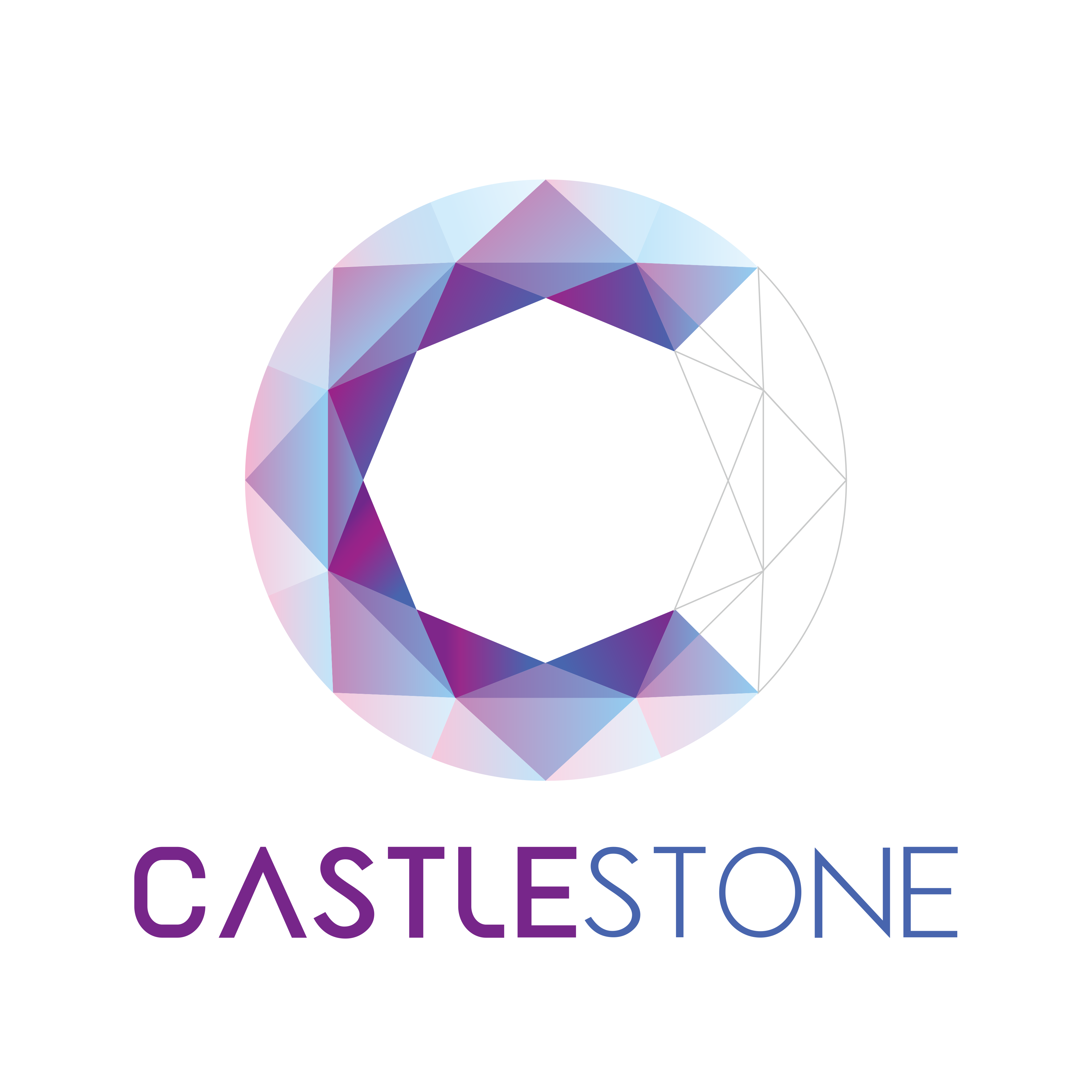 Castlestone Intelligent Technology (Shanghai) Co.,Ltd