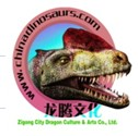 Zigong City Dragon Culture And Arts Co., Ltd