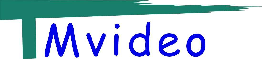 Shenzhen Tmvideo Technology Co.,Ltd,