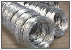 Xinlong Wire-drawing and Galvainzed Co., Ltd