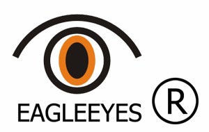 Eagleeyes Hardware Co., Ltd.