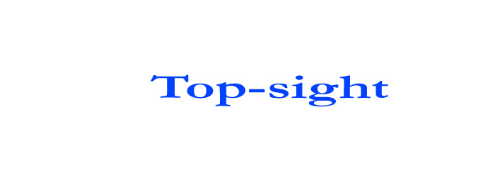 Top Sight International Dance Co. Ltd.
