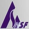 China NSF Bearing Co.,Ltd