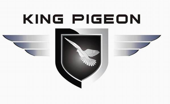King Pigeon GSM M2M Co.,Ltd