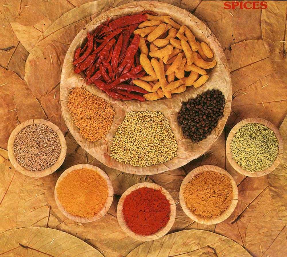 Frozen dried fruit india companies manufacturers for City indian dining ltd t a spice trader