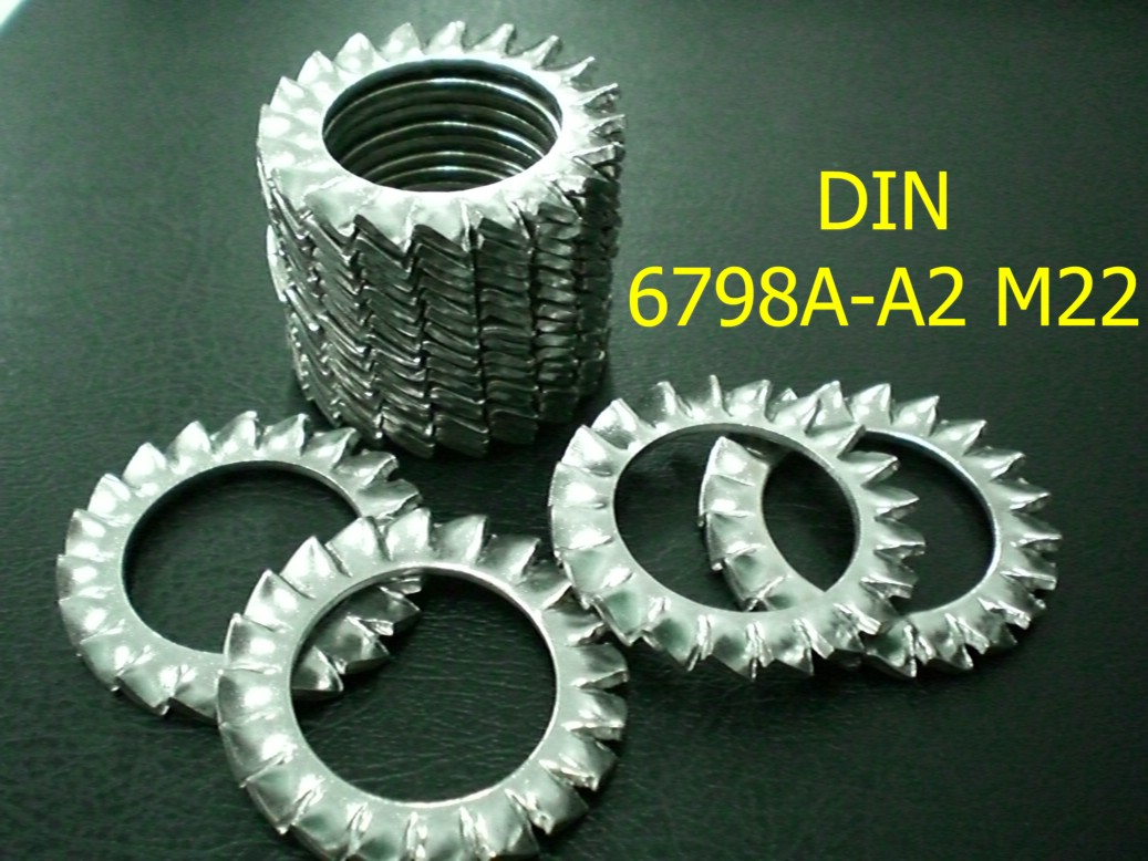 Tooth lock washer(gasket)
