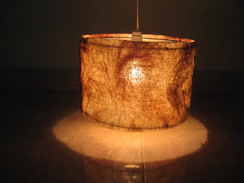 Sisal lampshades ecofriendly lampshadebio degradable lam sisal lampshades aloadofball Images