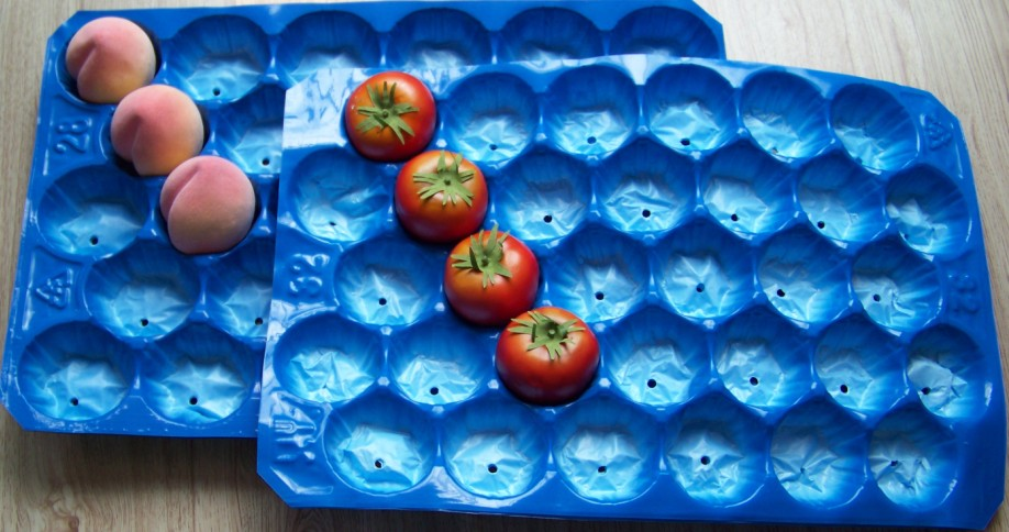 39*59cm Blue Eco-fiiendly PP Plastic Protecting Tray for Tom