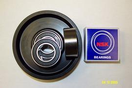 supply Japan NSK Bearing