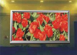 LED Display Full Color PH5mm(indoor)