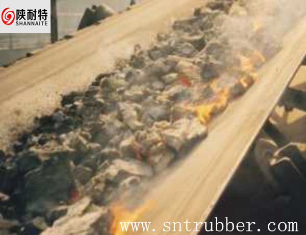 China Supply Heat-resisting Conveyor Belt