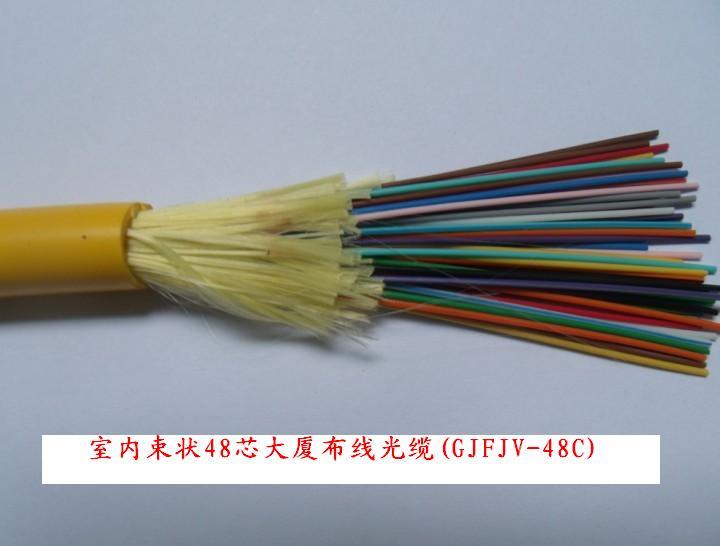 Indoor Multipurpose Distribution Cable GJFJV-48C