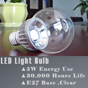 LED Bulbs 5W E27 Clear Globe (Equivalent of 40W Incandescent