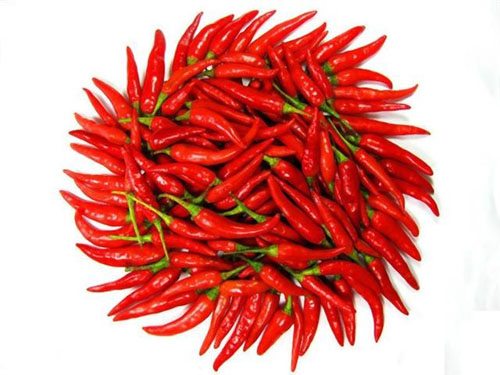 chilli