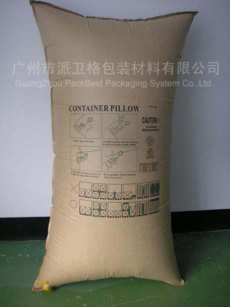 Codntainer Pillow