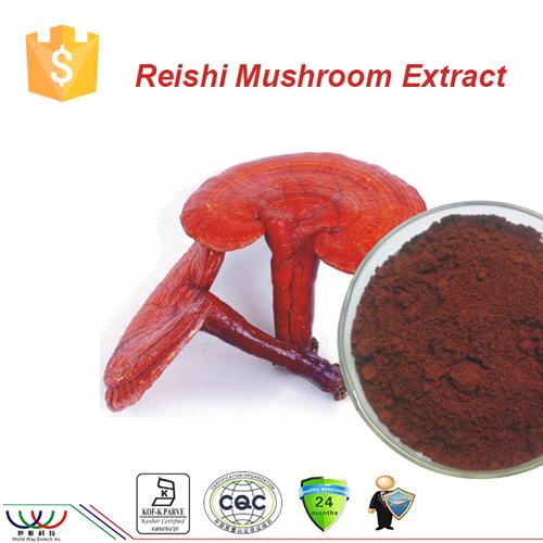 Pure natural improving immunity ganoderma/reishi mushroom ex