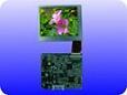 2.5″TFT-LCD Module