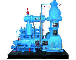 CNG Compressor-L type