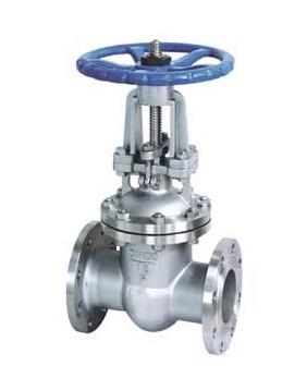 API stainless steel gate valve RF/BW/RTJ