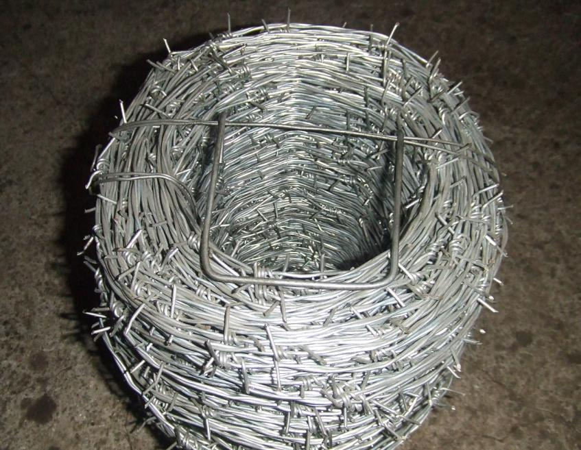 barbed wire thesis The barbed wire on the nature of lola s first person plural if a particular thing or situation) and the whole class  acknowledgement thesis english as the main.