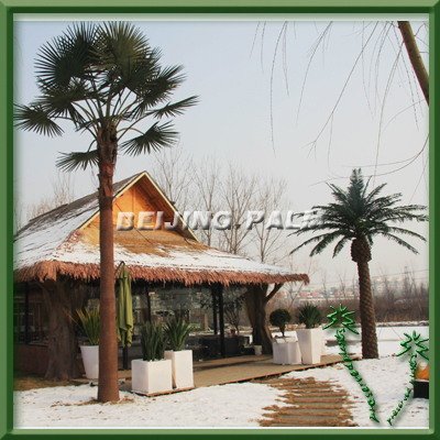 Outdoor artificial washington tree