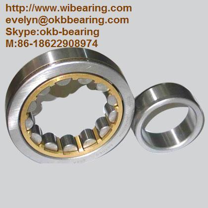 FAG NN3010 Cylindrical Roller Bearing,50x80x23,SKF NN3010