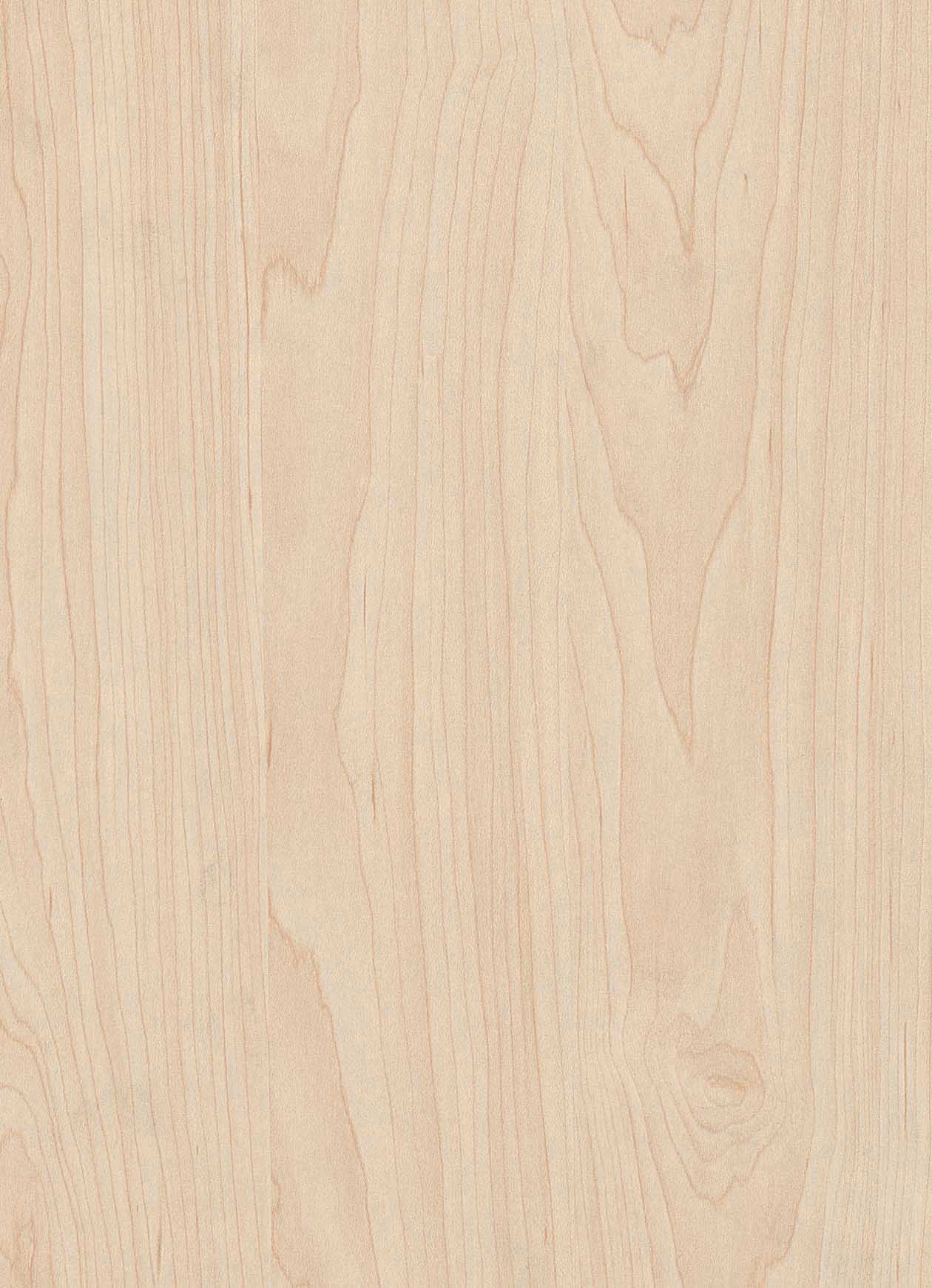 Maple Plywood Plywood