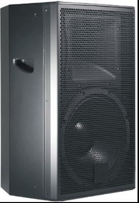 Professional Speaker TY-15