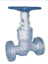 Carbon steel flanged RF RTJ globe valve class 900 1500 2500