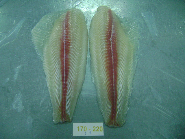 Pangasius Untrimmed fillet