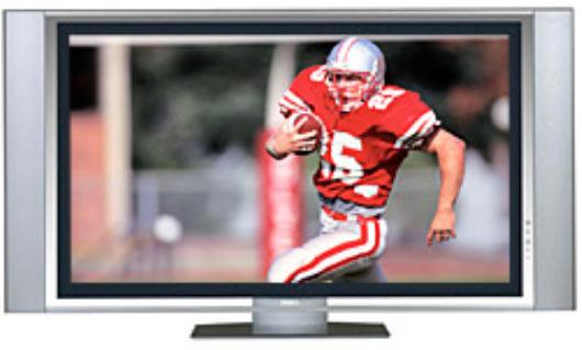 SONY 61-IN HDTV WEGA PLASMA TV