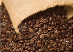Sell VIETNAM ARABICA & ROBUSTA COFFEE BEANS