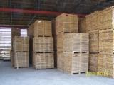 saw-timber, logs, firewood